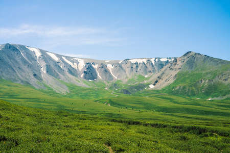 Giant mountains with snow above green valley in sunny day. Meadow with rich vegetation and trees of highlands in sunlight. Amazing mountain landscape of majestic nature. 写真素材 - 126453846