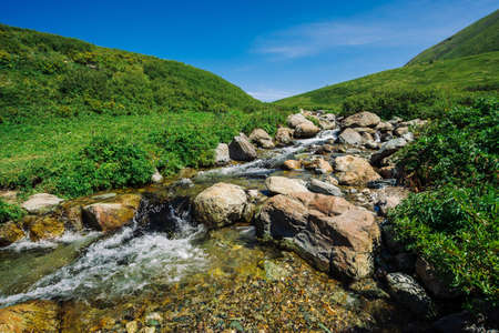 Mountain creek with big boulders in sunny green valley near hills under blue sky. Clean water stream in fast brook in sunlight. Amazing landscape of Altai nature. Standard-Bild - 126453853