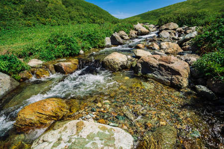 Mountain creek with big boulders in sunny green valley near hills under blue sky. Clean water stream in fast brook in sunlight. Amazing landscape of Altai nature.