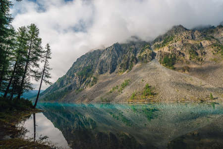 Coniferous trees near mountain lake with giant mountain range in haze. Amazing rocky ridge in mist reflected in pure water of highlands. Atmospheric mountainous landscape. Wonderful mountainscape.