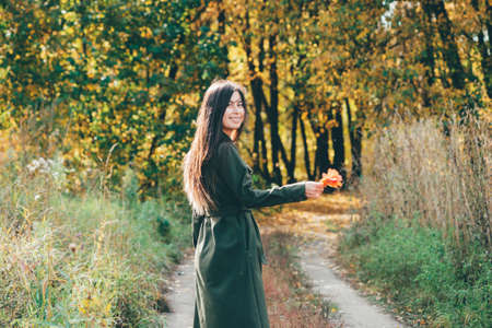 Dreamy beautiful girl with long natural black hair in sunlight on background with colorful leaves. Fallen leaves in girl hands in autumn forest. Female beauty portrait among vivid foliage in sunny day