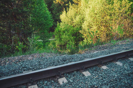 Railroad along trees. Railway on green vegetation background with copy space. Scenic backdrop with railway in forest among greenery. Sleepers and rails close up. Natural background with railroad.