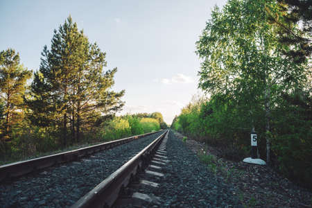 Scenery with railway in perspective across forest. Journey on rail track. Sleepers and rails. Vanishing perspective. Receding lines. Landscape with railroad along trees. Background with copy space.