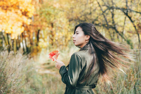 Female beauty portrait surrounded by vivid foliage. Dreamy beautiful girl with long natural black hair on autumn background with colorful leaves in bokeh. Fallen leaves in girl hands in autumn forest.
