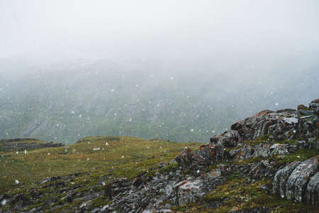 Beautiful snowfall in mountains. Atmospheric green alpine landscape with large snowflakes. Sharp craggy stones with lichens on hill during snowfall. Wonderful scenery of highlands with flakes of snow.