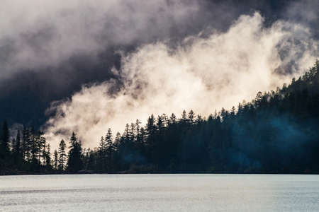 Beautiful silhouettes of pointy fir tops on hillside along mountain lake in dense fog. Coniferous trees above shiny calm water. Alpine tranquil landscape at early morning. Ghostly atmospheric scenery.