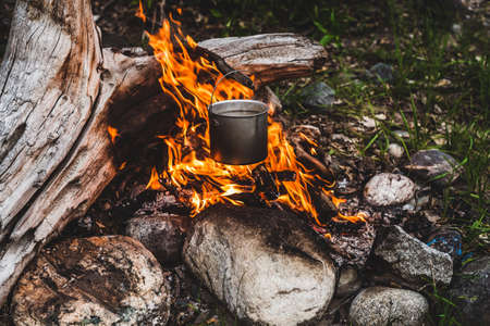 Kettle hanging over fire. Cooking food at fire in wild. Beautiful big log burns in bonfire close-up. Survival in wild nature. Wonderful flame with caldron. Pot hangs in flames. Campfire background.