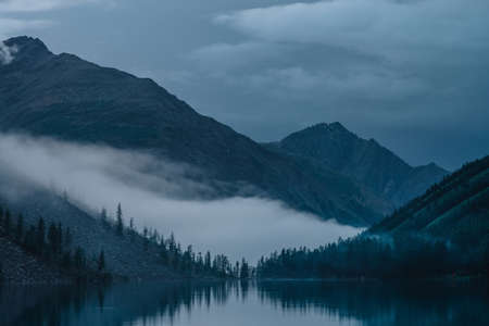 Low cloud above alpine lake. Silhouettes of trees reflected on mountain lake. Firs and pines above calm water in dense fog. Highland tranquil landscape at early morning. Ghostly atmospheric scenery.