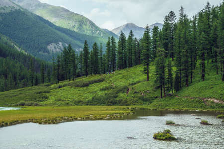 Atmospheric scenery with alpine lake and coniferous forest in mountain valley. Dramatic green landscape with conifer trees on slopes and ripples on water surface. Beautiful wild place in mountains. 스톡 콘텐츠
