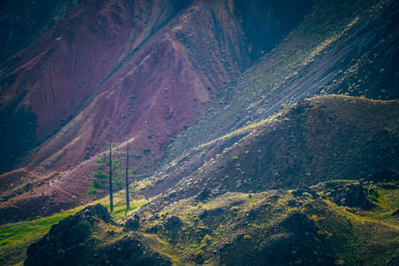Fantasy landscape with magenta mountains. Two trees among green vegetation on slope near multicolor clay mountain wall. Colorful scenery with multi-color mountains. Scenic view to pink mountain.