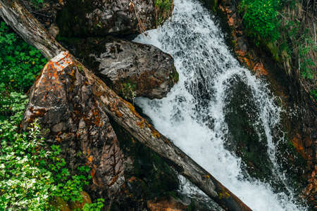 Scenic nature background of waterfall near mossy rocks with rich vegetation close-up. Minimalist natural backdrop with falling water of mountain creek. Frozen motion of splashes. Wild flora on stones. 스톡 콘텐츠