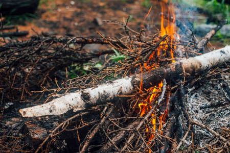 Burning branches and brushwood in fire close-up. Atmospheric warm background with orange flame of campfire and blue smoke. Beautiful full frame image of bonfire. Firewood burns in vivid flames.