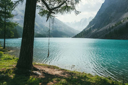 Atmospheric idyllic landscape with rope swing on tree near alpine lake with relax waves on transparent turquoise water. Amazing view to meditative ripples on azure clear calm water of mountain lake. 스톡 콘텐츠