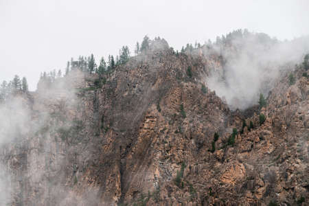 Ghostly alpine view through low clouds to beautiful rockies. Dense fog among giant rocky mountains with trees on top. Atmospheric highland landscape. Big cliff in cloudy sky. Minimalist misty scenery. 스톡 콘텐츠