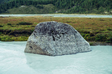 Scenic alpine landscape with big mossy stone in clear azure water of mountain river. Atmospheric highland scenery with milky river with cyan water. Big stone in mountain river and grasses on shore.