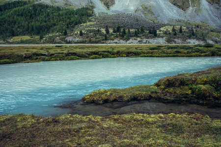 Autumn scenery with azure milky mountain river and rich vegetation. Atmospheric autumn alpine landscape with milky river with clear cyan water. Grasses and mosses on shore. Scenic highland nature.