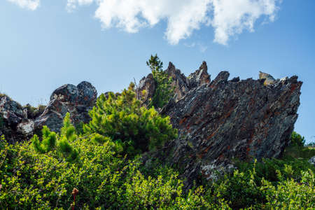 Beautiful big stone with mosses and lichens among rich greenery under blue sky with big cloud. Scenic nature background with big sharpened rock among lush vegetation. Spiky stone among vivid grasses.