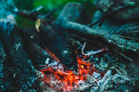 Vivid smoldered firewoods burned in fire close-up. Atmospheric warm background with orange flame of campfire and blue smoke. Wonderful full frame image of bonfire. Burning logs in beautiful fire.