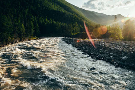 Beautiful view to powerful mountain river in golden light. Scenic landscape with mountain river along forest in sunbeams. Picturesque sunny scenery with gold rapids on fast river with stony shore.