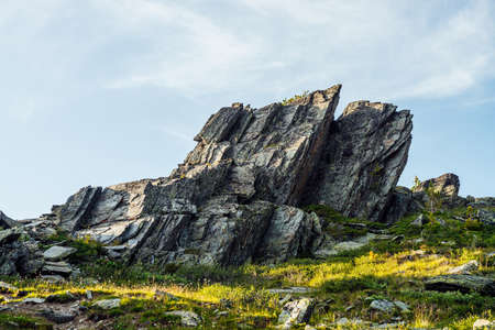 Sunny highland scenery with sharpened stones of unusual shape. Awesome scenic mountain landscape with big cracked pointed stones closeup among grass under blue sky in sunlight. Sharp rocks with cracks 스톡 콘텐츠