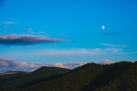 Minimal mountain landscape with big forest mountains under blue sky with violet clouds and moon on sunset. Beautiful sunny scenery with forest on big hill tops in sunlight under lilac clouds and moon.