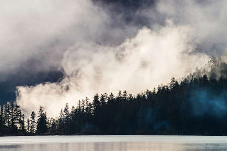 Beautiful silhouettes of pointy tree tops on hillside along mountain lake in dense fog. Pines above calm water of highland lake. Alpine tranquil landscape at early morning. Ghostly atmospheric scenery