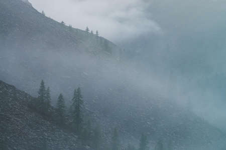 Dramatic bleak dense fog among big rocky mountainside with coniferous trees. Ghostly atmospheric view to beautiful rocks among low clouds. Minimalist scenery in mysterious place at early foggy morning
