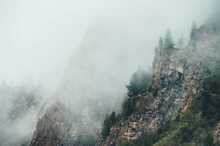 Beautiful dramatic view to rocky mountain with coniferous trees in dense fog. Ghostly foggy landscape with big rocks in clouds. Low clouds near high rock with forest. Gloomy atmospheric misty scenery.