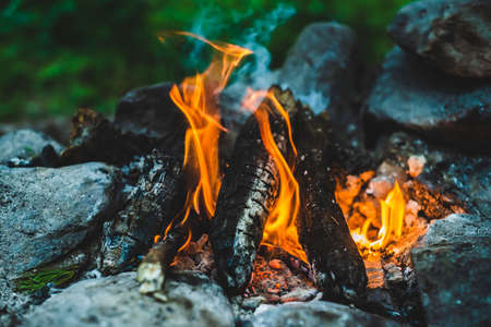 Vivid smoldered firewoods burned in fire close-up. Atmospheric warm background with orange flame of campfire and blue smoke. Unimaginable full frame image of bonfire. Burning logs in beautiful fire.