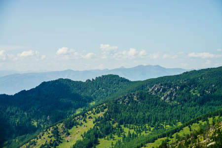 Scenic aerial view to green forest hills and long mountain range under blue sky. Awesome minimalist alpine landscape of vast expanses. Wonderful vivid highland scenery with great mountains and forest.