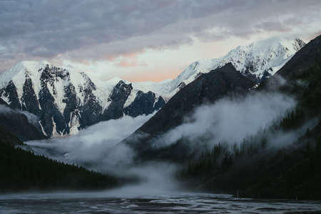 Scenic landscape with great snowy mountains on sunset and dense low clouds in mountain valley with forest silhouette. Atmospheric scenery with high snow-capped mountain on sunrise and thick low clouds