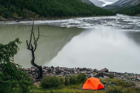 Scenic landscape with one vivid orange tent and beautiful dead tree near mountain lake water. Atmospheric scenery with alone bright orange tent and dry tree near edge water surface of mountain lake.