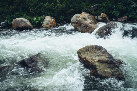 Vivid beautiful landscape with big boulders in clear water of powerful mountain river near wild thickets. Colorful scenery of rapids on transparent water of mountain creek and wild flora of mountains.