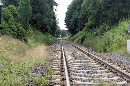 woodland scenery: Railroad among woodland. woodland scenery with railroad track, railway