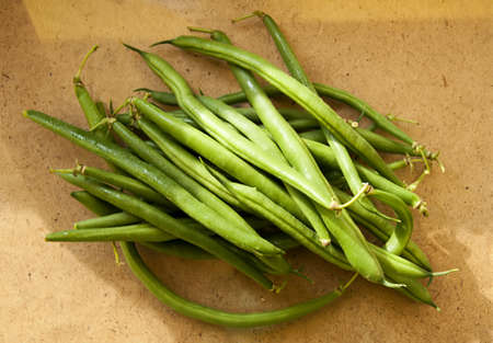 asparagus  beans Stock Photo - 16317113