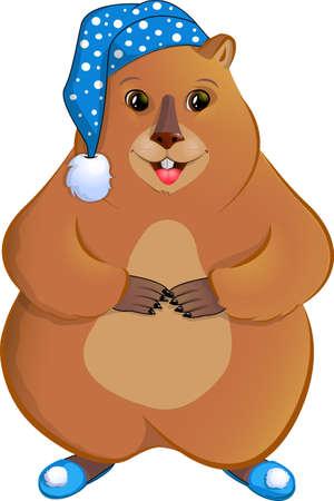 marmot: Marmot in the nightcap.