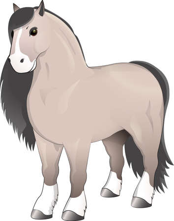 Gray horse standing Illustration