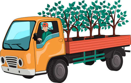 Truck with tree seedlings