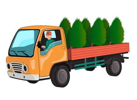 Truck with thuja Illustration