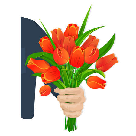 Scarlet tulips in hand