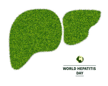 Giornata mondiale dell'epatite. Simbolo di un fegato sano, da un prato verde. personifica la salute del corpo. Ecologia nella lotta all'epatite. Isolato su sfondo bianco, con testo, illustrazione vettoriale. Vettoriali