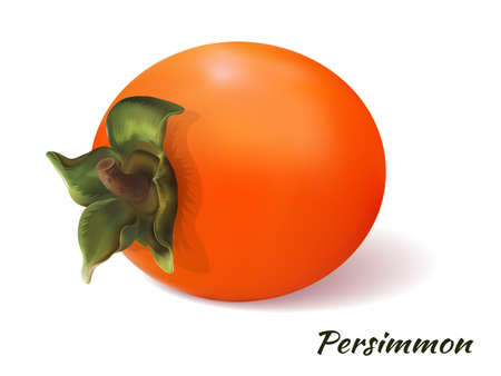 Persimmon on a transparent background with the inscription. Realistic object. Juicy, orange fruit. On white background, isolated. Vector illustration.