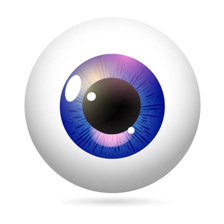 Iris púrpura del globo ocular