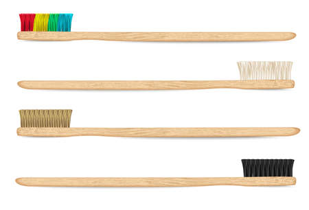 bamboo toothbrushes vector 1 Illustration