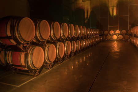 Aging boots for wine in some wineries in the Penedes region, Catalonia, Spain