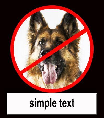 dog prohibition photo