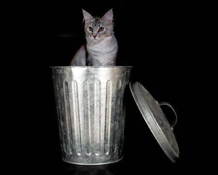 silver trashcan