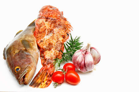 grouper: Fresh mediterranean fish grouper and scorpion fish with ingredients for soup