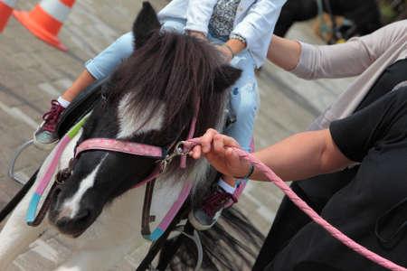 psicologia infantil: Pony experiencia de viaje para los niños