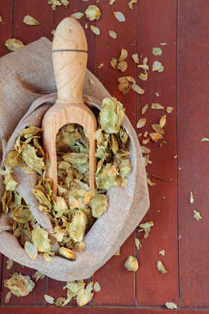 humulus: Dry cones of american hop Humulus lupulus flowers on wooden background Stock Photo